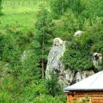 Altai Mountain Carved Icon