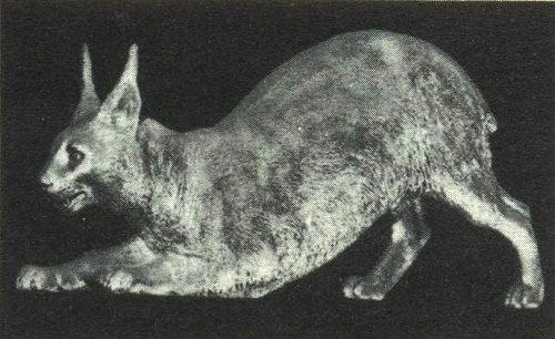 Lynx. 1856. P. Klodt. Stern decoration of corvette