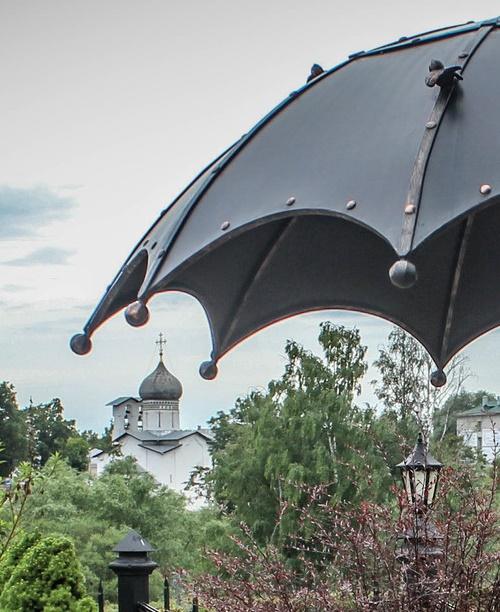 A sparrow on the umbrella