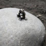 Monument to the frog-traveler, the smallest monument in the world