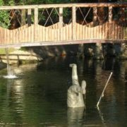 Why the fisherman fell into the pond from the bridge - no one remembers