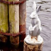 Escaped flooding hare in St. Petersburg