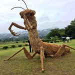 Rice straw sculpture festival in Japan