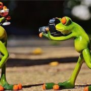 Funny sculpture of a photographer and a model - frogs