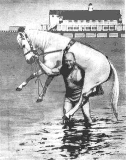 Carrying a horse