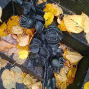Symbolic Black roses