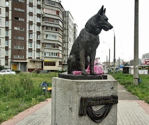 An amazing monument to German Shepherd, waiting for his owners after their death. bronze. sculptor Oleg Klyuyev. Tolyatti, Russia