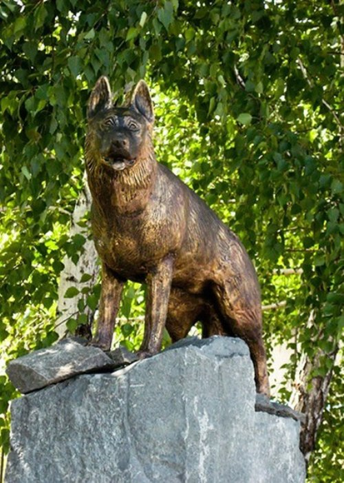 Monument to dogs killed in the line of duty. Novosibirsk