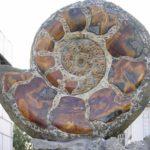 Unique jewelry stone Simbirtsit Monument