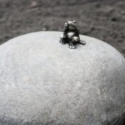 Height of the sculpture only 44 millimeters. Thus, Tomsk frog-traveler - is the smallest monument in the world