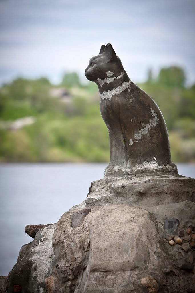 The city of Plyos, Ivanovo region, Russia. Cat's monument