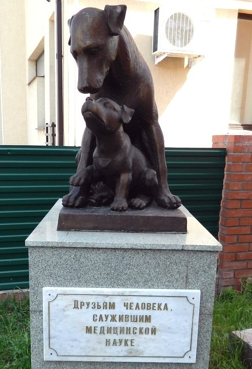 Ufa, Bashkiria. Monument to experimental animals in Ufa