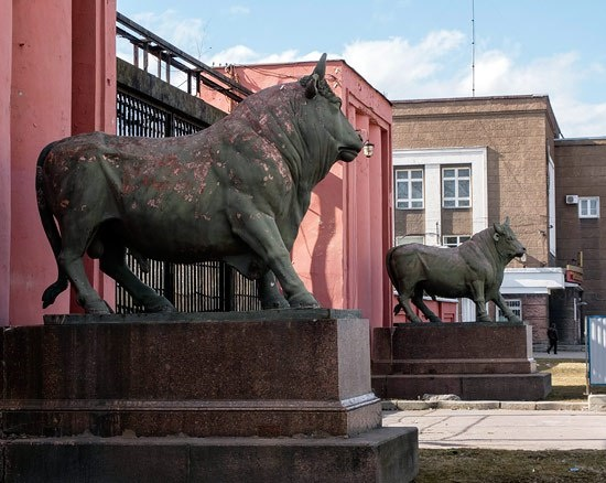 Adorning the entrance to Samson meat processing plant massive sculptures of the bulls. Bronze. 1827