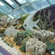 The Flower Dome sculptures - fish and underwater plants