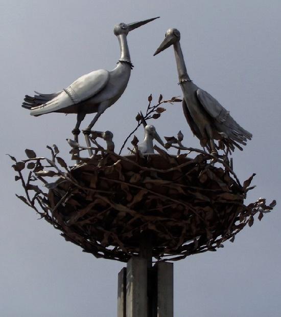 St. Petersburg storks