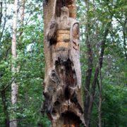 Details of amazing wooden sculpture