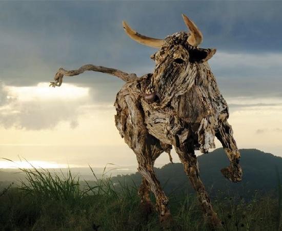 Confrontation. James Doran-Webb driftwood animal sculpture