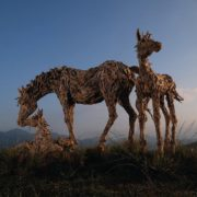 Stunningly beautiful sculpture created from driftwood. Horses