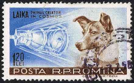 Postage stamp devoted to Laika
