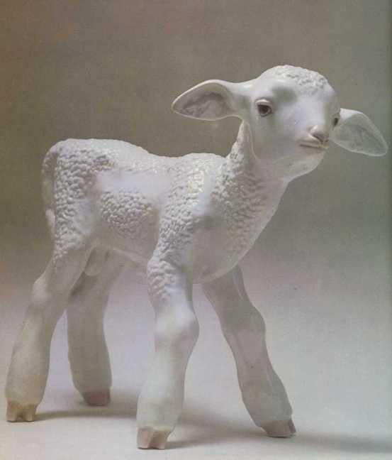 Lamb. 1937